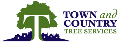 Town and Country Tree Services