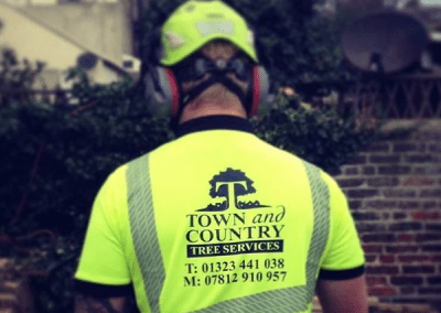 Town and Country Tree Services safety wear